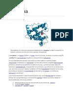 Documento Sin Título Proteina