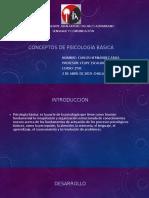 Conceptos de Psicología Básica
