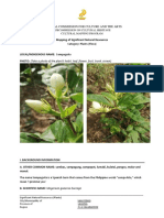 Form 01C Natural Resources - Plants 2019.docx