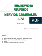 11. Clase Pares Craneales I Al VI