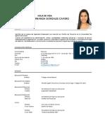 CV Practicante Inteligencia Comercial