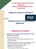 ANATOMIA_ARTERIA_AORTA_1 (1).pptx