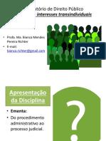 Aula 1 - Processo Coletivo Aspectos Introdutórios (2)