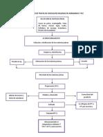 diagrama de chocolate proceso
