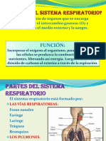diapositvasdelsistemarespiratorio-jlo-2010-121107190937-phpapp02.pdf