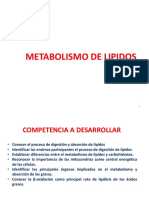 bioquimica 2 metabolismo de lipidos.pptx