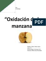 oxidaciondelamanzana.docx
