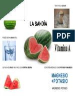 LA SANDIA CARACTERISTICAS.docx