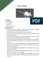 RATAS DE LABORATORIO.docx