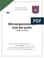 Ciclo del Azufre(1).docx