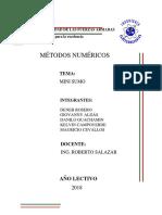 informe del minisumo.docx