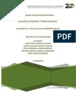 Plan de negocios naturcaps