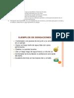 PERCEPCION Y SENSACIÓN.docx