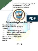 micro-caratula.docx