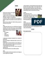 ACTIVIDADES ECONOMICAS DE TACNA.docx