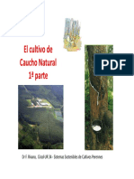 Anexo 2. Caucho Natural 1-Historia y General.pdf
