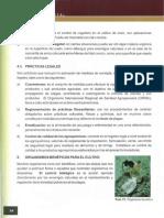 sanidad vegetal.pdf