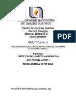 Avilés_Ortiz_Romo_Practica.9..docx