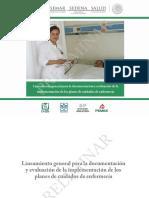 LINEAMIENTOS PLACE.pdf