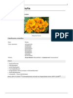 angiospermas.pdf