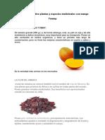 Proyecto productivo plantas y especies medicinales con mango.docx