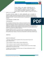 MULTIPARAMETRICO.docx