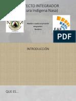 PROYECTO INTEGRADOR.pptx