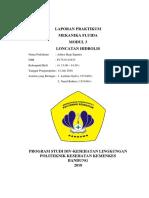 LAPORAN PRAKTIKUM LONCATAN HIDROLIS ( MODUL 3 ) ITB FIXS.docx