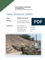 informe_campo-CHAMO-TU-PARTE-PONE-OJE.docx