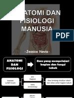 Pengantar Anatomi dan Fisiologi Manusia