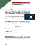 DETERMINACIÓN DE UN CAUDAL.docx
