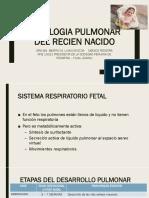 8. FISIOLOGIA PULMONAR