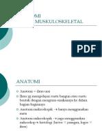 Anatomi musculoschelektal