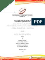 Actividad 04 - Interpretación de Las Cuentas Analíticas.E de La Actividad Agraria, Pecuaria y Agropecuaria