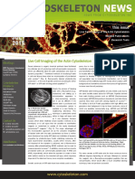 Live Cell Imaging of Actin