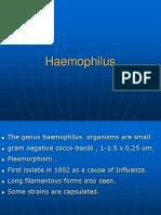 Hemophilus & Bodetella