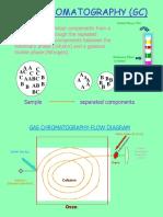 GC presentation.ppt