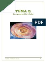 tema-2_la-reproduccic3b3n-celular_curso-2017_181.pdf