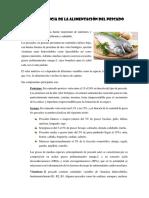 La Importancia de La Alimentación Del Pescado