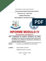 INFORME MICKI MODULO IV.docx
