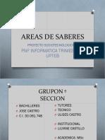 Areas de Saberes
