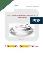 M2_BIOENERGIA_TEORIA.pdf