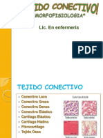 morfofisiologiatejidoconectivo-131126151449-phpapp01