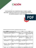 COMPETENCIAS CURRICULARES MÍNIMAS.docx