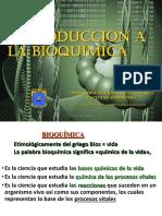 INTRODUCCIÓN A LA BIOQUÍMICA - ENZIMAS.pdf