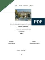 bianca-atestat-Copy (1).docx
