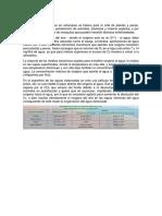 aguas-parte-anni-calculo-oxigeno (1).docx