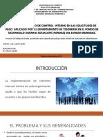 procesos de control interno tesoreria.ppsx