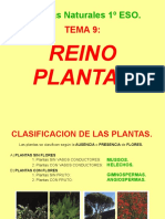 reinoplantas-150604204136-lva1-app6891.pdf