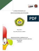 LP DHF dhea.docx